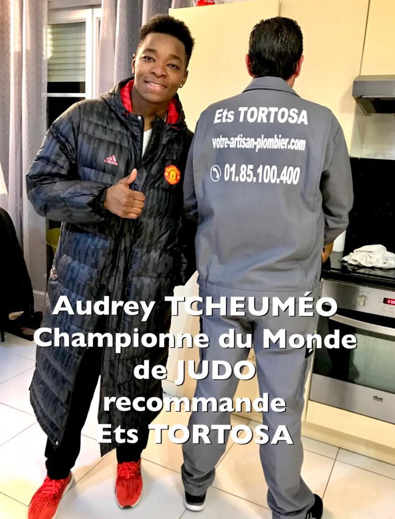 tcheumeo-ets-tortosa