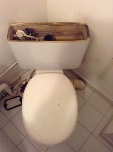 Remplacement-reservoir-toilette